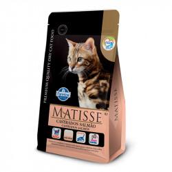 Matisse - Gato Adulto...