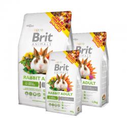 Brit Animals Rabbit Conejo...