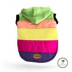 Yupi The Pug - Rainbow Jacket